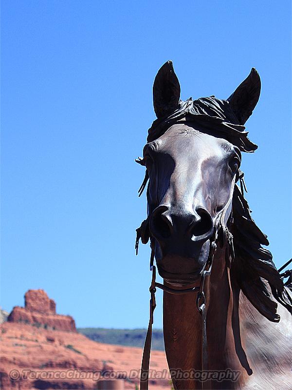 Horse Sedona