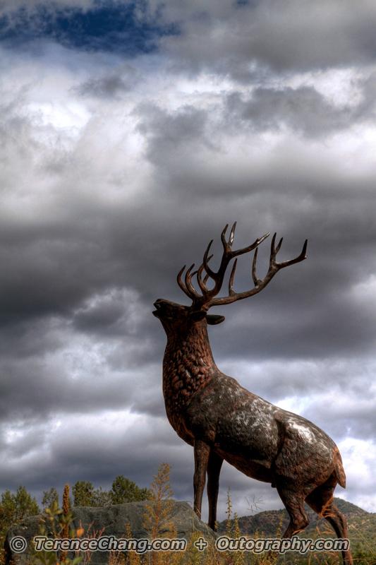 Rain Deer Related Keywords & Suggestions - Rain Deer Long Tail ...